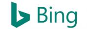 Bing Problems